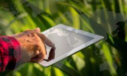 """Curso Ejecutivo Online """"Transformación Digital del Sector Agroalimentario en un Entorno Global"""""""